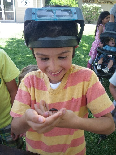 Earth Day Insect Petting Zoo