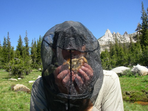 Mosquito headnet lunch